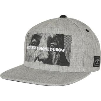 Gorra plana gris snapback WL Watch It Grow de Cayler & Sons